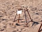 gniazda żółwi Careta Careta na plaży Dafni, zabezpieczone przed zadeptaniem